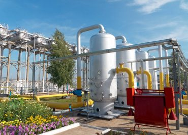 Bunge And Solazyme Expand Joint Venture