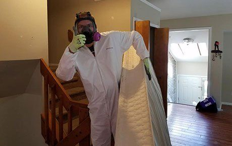 Professional Extreme Cleaning Services in Colorado